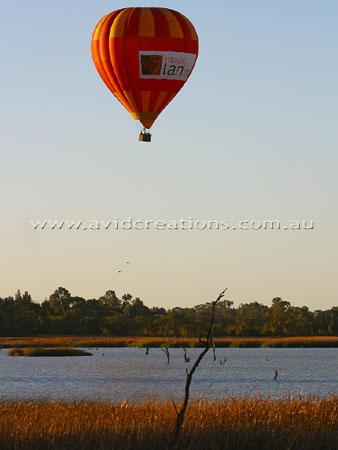 River Murray Flight